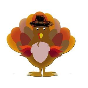 turkey-504378_640